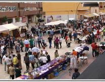 VIII Feria Intercultural