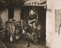 Joven montado en burro